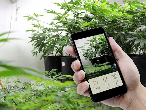 The Best Smart Grow Apps 2020 Update Cannabis Tech
