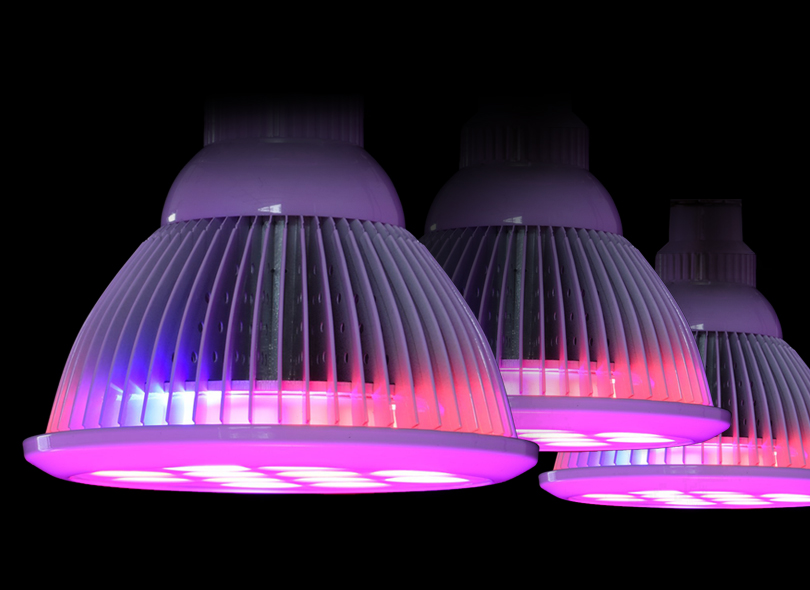 What You Need To Know About LED Lighting Recipes ...